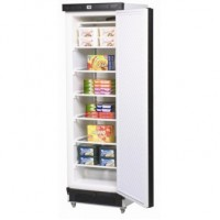 Bromic | Solid Door Freezer 300L